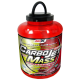 Carbojet Mass Profesional (1800 Gr) AmiX